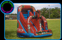 Giant Dragon slide  DISCOUNTED PRICE